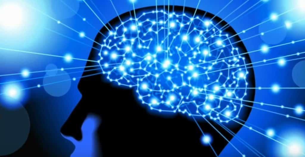 Cerebro y el silencio